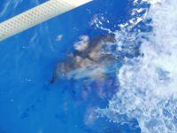 Croisière juin 2007 - p6290031